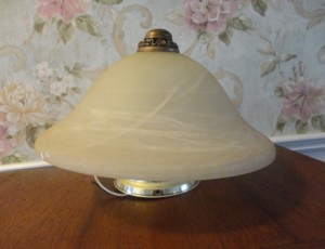 Dome Light Fixture – $25
