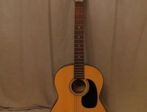 E1 Degas Guitar – $145
