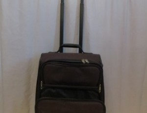 Samsonite Hand Bag – $20