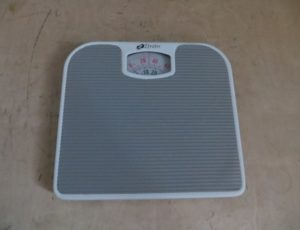 Zenith Scale – $10