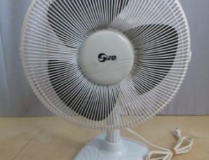 Super 13″ Oscillating Fan – $15