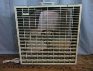 Fan – $35
